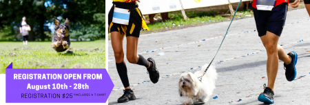 Indiana's Virtual 10K Run/Pup Strut